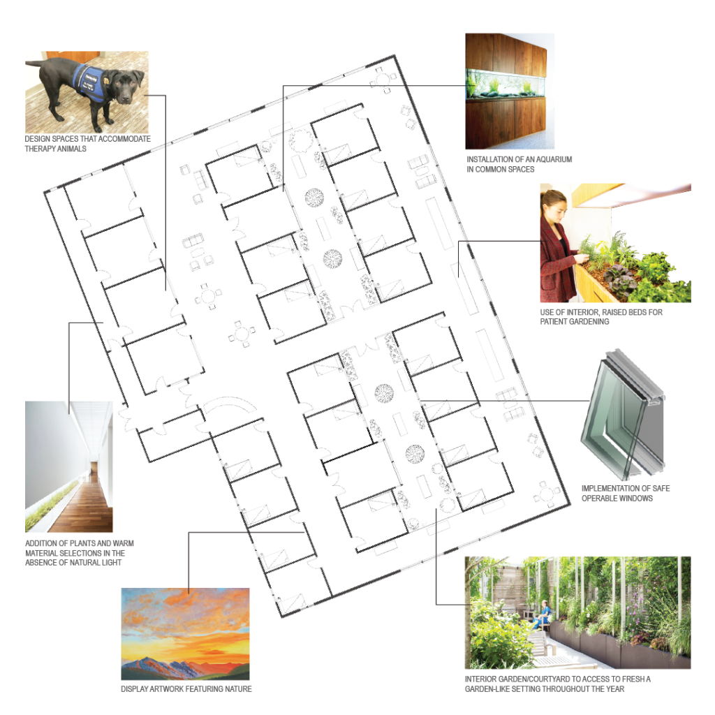 Storyboard showing plan drawing highlighting specific green space features
